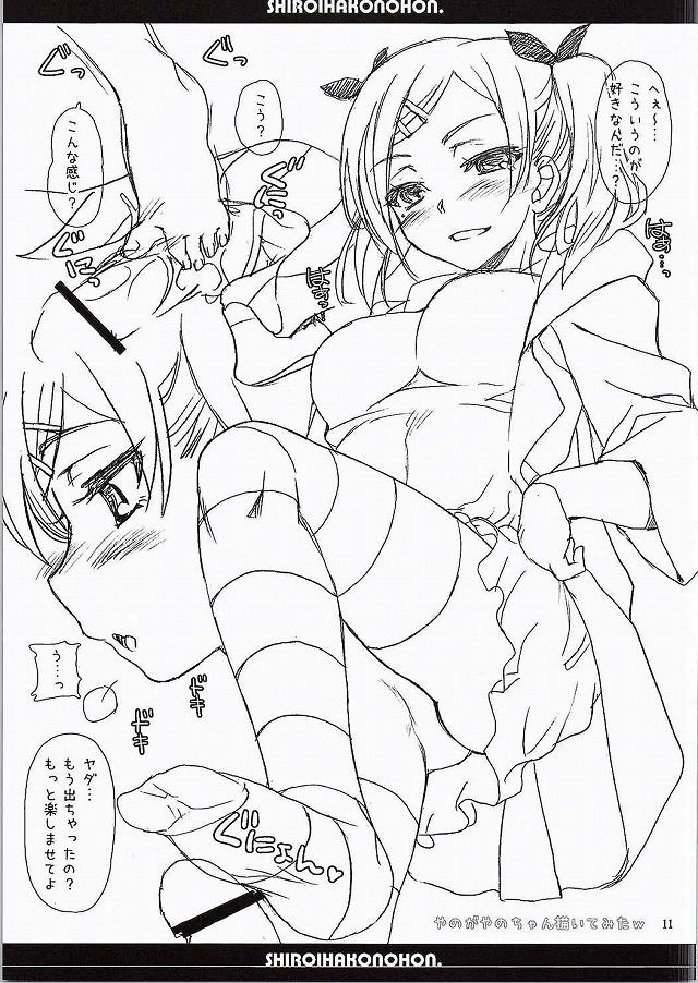 10shiroihakonohon