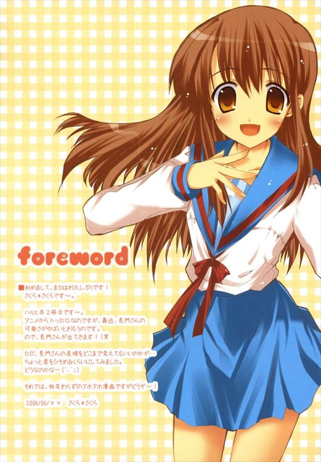 suzumiyaharuhinosouzou003